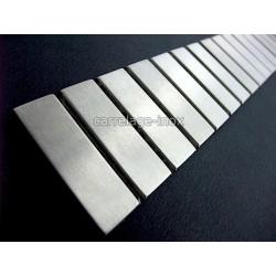 Listel inox mosaique carrelage frise acier metal RECTANGULAR 48